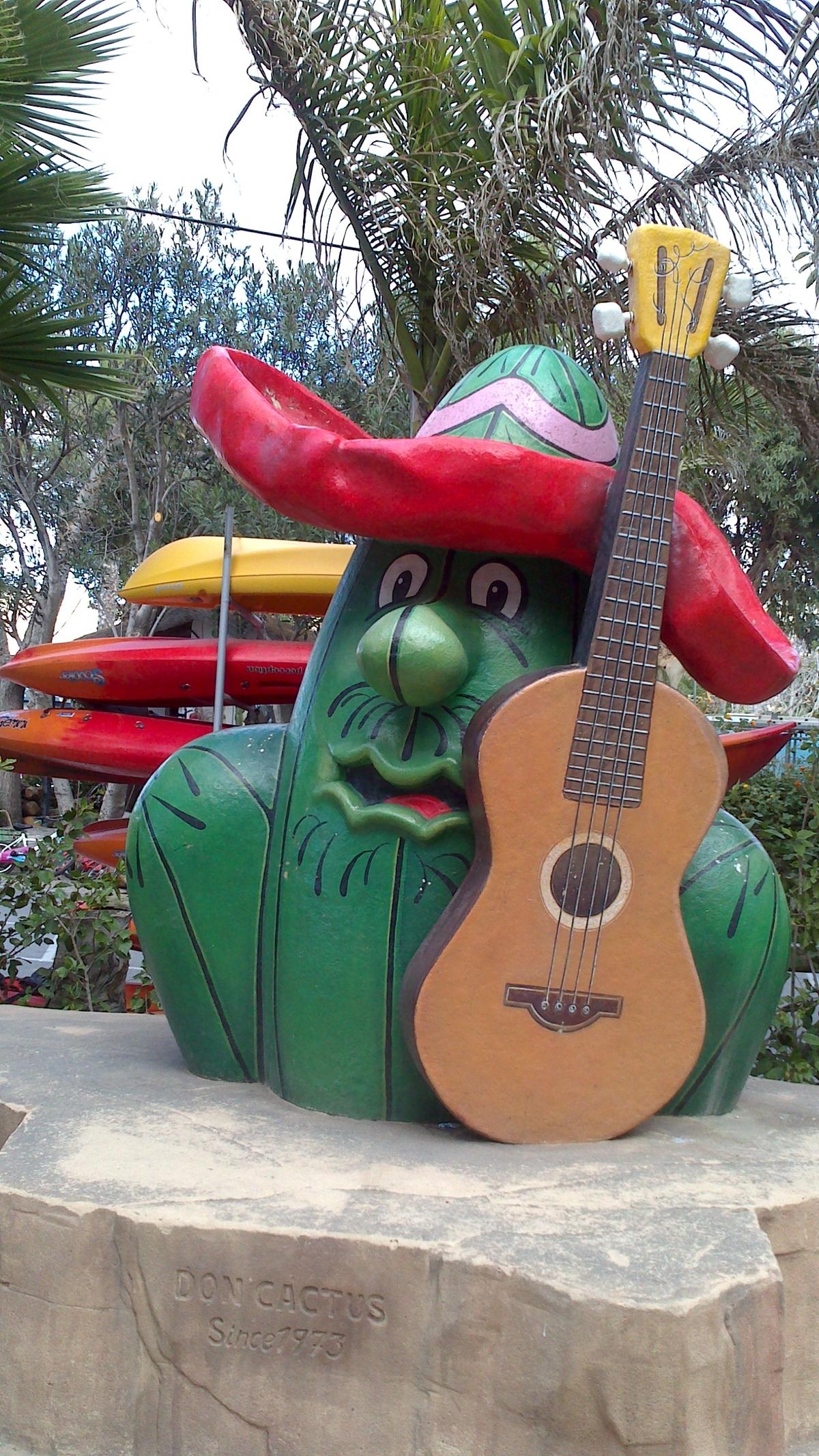 Don Cactus camp