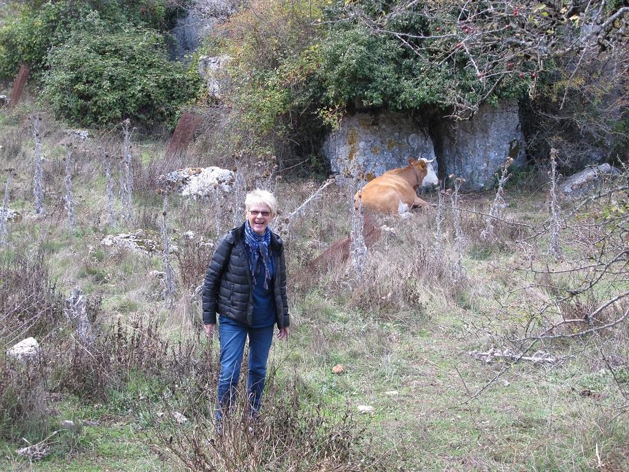 Mandy och vargen