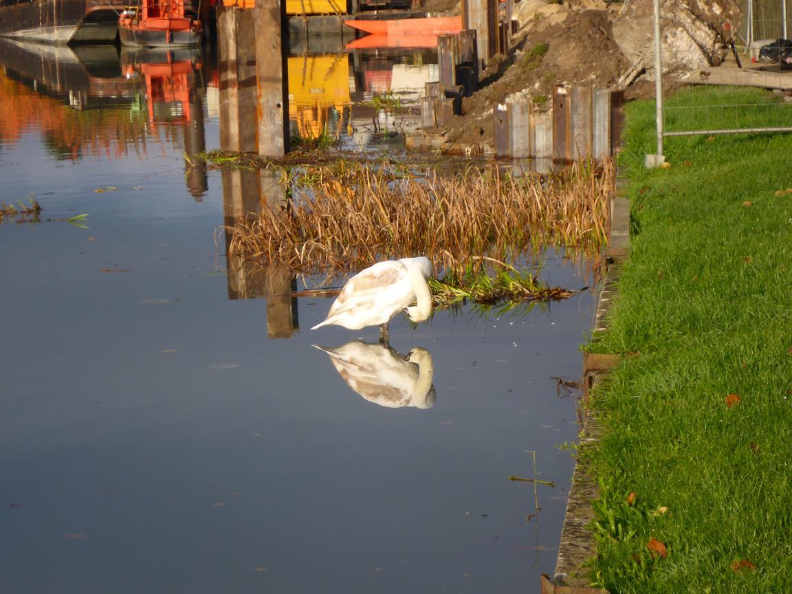 Kanal i Mareuil suir Ay
