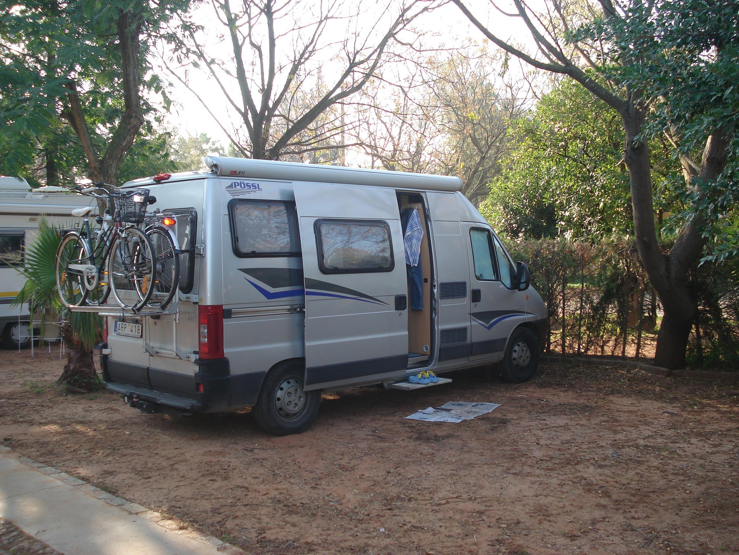 Cat camping (Vilson)